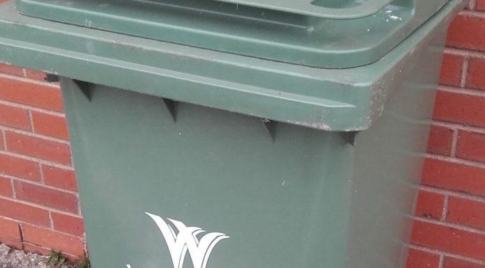 green bin