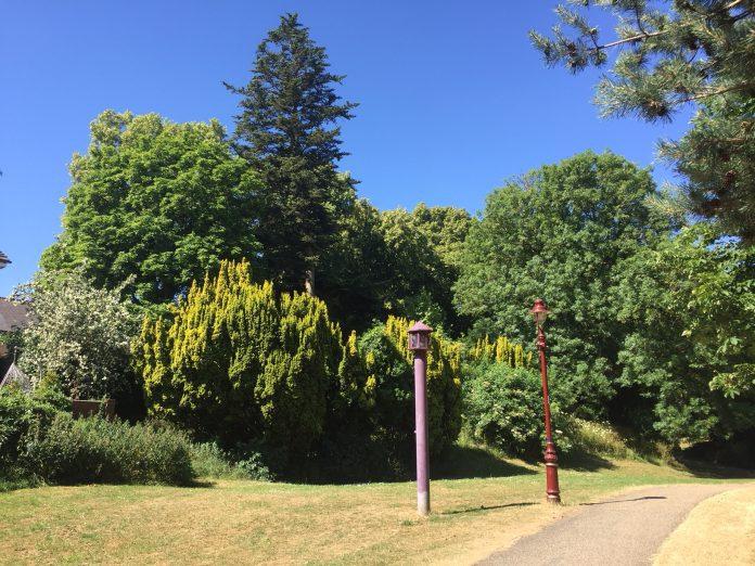 Wrexham Council Bellevue Park