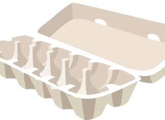 Cardboard Egg Box Recycling