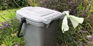 Caddy food waste recycling liner