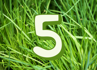 Recycling Top 5 Five Blogs